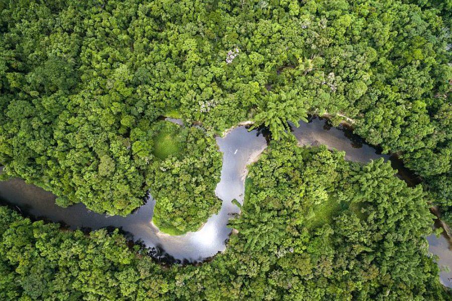 Brasilien Amazonas Naturreisen GloboTur