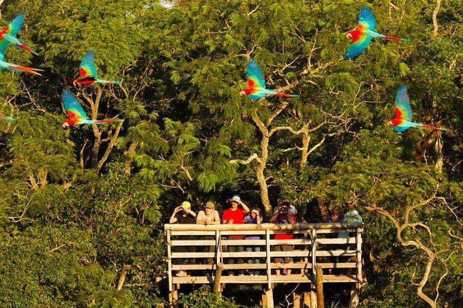 Brasilien Naturreisen Spezialist GloboTur MS