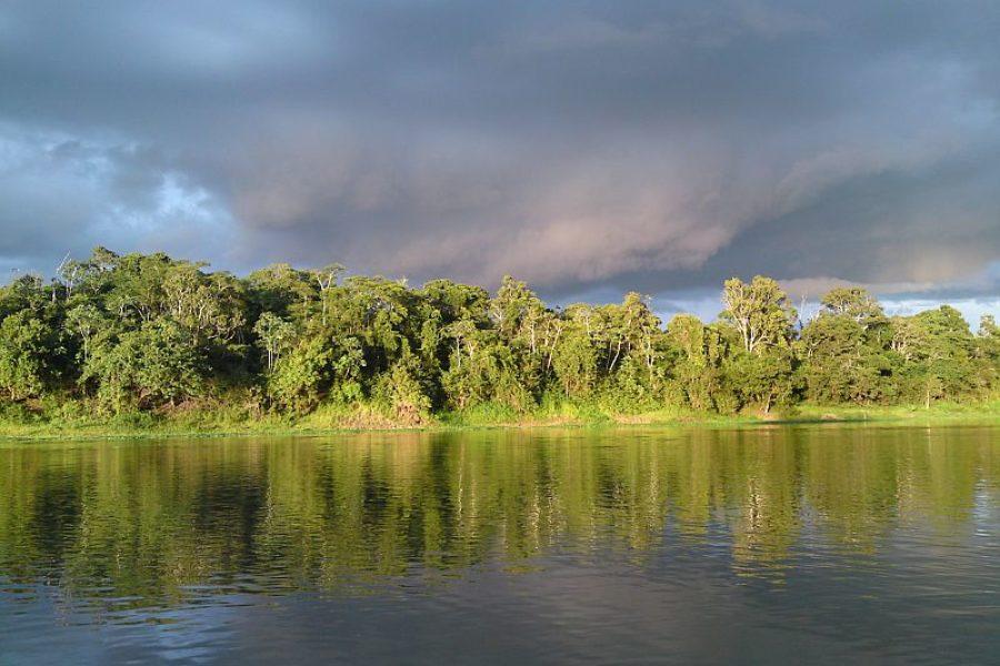 Amazonas Naturerlebnis Juma Lake Inn Lodge GloboTur
