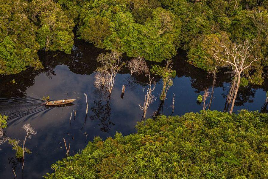 Brasilien Amazonas Urwald GloboTur