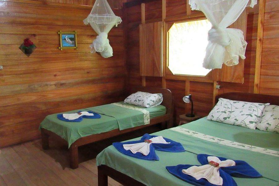 Bungalow Dolphin Lodge Amazonas GloboTur