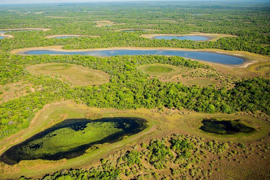 Die Arche Noe Suedamerikas Pantanal GloboTur