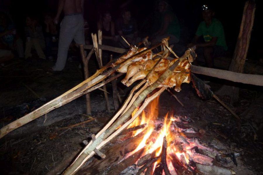 Juma Lake Inn Survival Dschungel Camp GloboTur