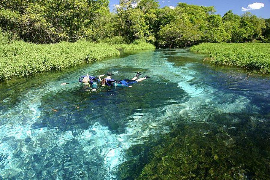 Sucuri Fluss Bonito Brasilien Visitms GloboTur