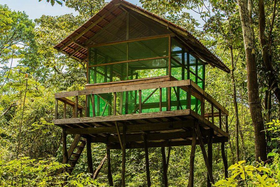 Uacari Lodge Baumhaus GloboTur