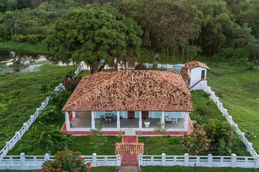 Fazenda Almada Ilheus Bahia Loewenaeffchen Brasilien GloboTur