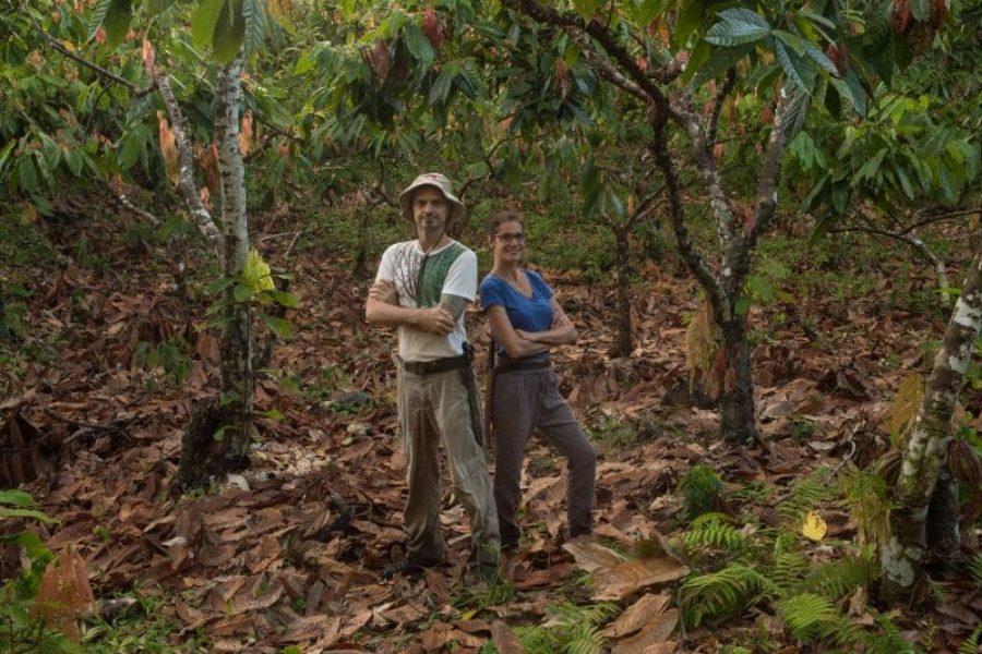 Fazenda Almada Kakaoplantage Brasilien GloboTur